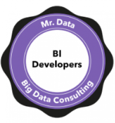 mr data Business intelligence staffing agencies